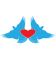 Heart and Birds valentines day symbol vector image