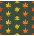 Fallen leaves only vector image