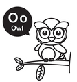 O Owl cartoon and alphabet for children to vector image