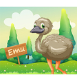 A young ostrich beside a wooden signboard vector image