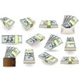 Set of One Hundred Dollars Banknotes vector image