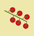 Cherry Tomato Icon vector image