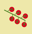 Cherry Tomato Icon vector image