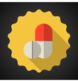Medical Pill Flat Icon vector image