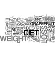 Best weight loss diet text word cloud concept vector image