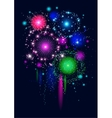 Festive firework vector image vector image