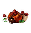 chocolate fondant with raspberries and mint vector image