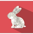 rabbit low poly design vector image