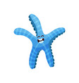 cute blue cartoon starfish character invertebrate vector image