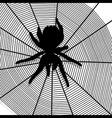 spider web texture background vector image
