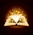 Old opened book with magic light background vector image