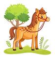 cartoon horse standing in a meadow vector image