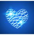 Shiny Heart of Bubbles vector image