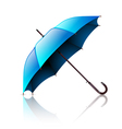 umbrella blue vector image