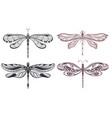decorative dragonflies vector image vector image