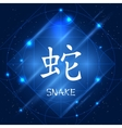 Chinese Zodiac Sign Snake vector image