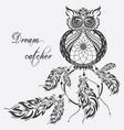 dream catcher owl white background vector image