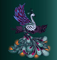 Bird Phoenix with lights on its tale vector image