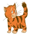 Cute Ginger Cat ector Of Pets vector image