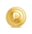 Golden isolated peso coin on the white background vector image
