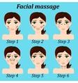 original trendy girl facial massage set vector image