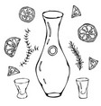 decanter for wine oil or water sketch with citrus vector image