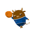 cute funny little bull student playing basketball vector image