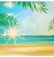 Sea beach for summer design vector image