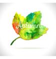 Watercolor leaf design element vector image