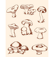 set of vintage forest mushrooms vector image vector image