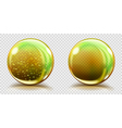 Two big yellow glass spheres vector image