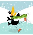 Toucan learn to skate vector image