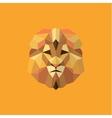 Lion golden orange mane low poly style of modern vector image