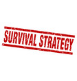 square grunge red survival strategy stamp vector image