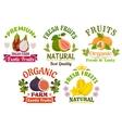 Fresh juicy natural organic fruits icons set vector image vector image