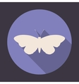 Butterfly symbol on round icon vector image