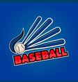 baseball word and equipment vector image
