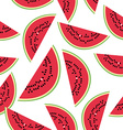 Seamless pattern with watermelon on the white vector image