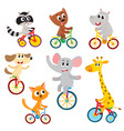 cute little animal characters riding unicycle vector image