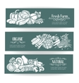 banners with decorative vegetables vector image vector image