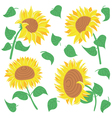 beautiful colorful sunflowers and leaves vector image