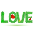 love of green leaves vector image