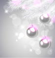 white pine branches and decorations vector image