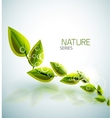 Flying green leaves nature background vector image vector image