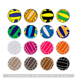 Collection of Volleyball Balls on White Background vector image