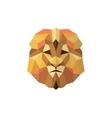 Leo golden orange mane low poly style of modern vector image