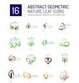 Geometric leaf icon set vector image