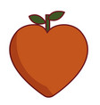 peach fruit icon vector image