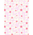 White frangipani flowers on a pink background vector image