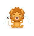 sad little baby lion cartoon character sitting on vector image